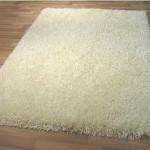 ניקוי שטיחים באשדוד