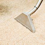 טיפול בנזקי מים בשטיח