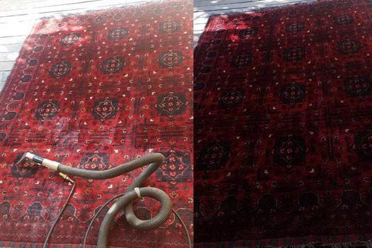 גל אור המובילה בניקוי שטיחים וריפודים